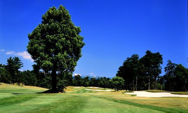 画像: 【熊本・合宿】先生は「Z打法」若林功二プロ。GWに短期集中 飛距離アップ! 上田治設計「くまもと中央CC」も回ります。4日間 4ラウンド 一人でも参加可能 - ゴルフへ行こうWEB by ゴルフダイジェスト
