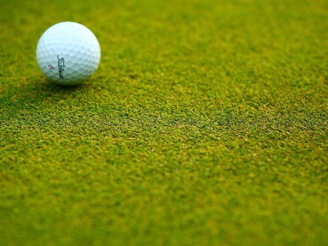 画像: 沼津国際CCが採用した芝種「777」は、芽数がつまって緑の絨毯のようなしっとりとした仕上がり。高速だが転がりは素直で練習にも最適