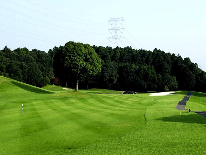 画像: オーク・ヒルズカントリークラブ 16番ホール(501Y・P5)330ヤード地点にシンボルの「オークツリー」がハザードの役をなす。グリーン手前には大きな池。グリーンはペンクロス