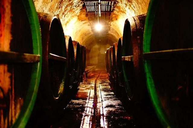 画像: ビールを貯蔵したオーク樽が並ぶ地下の醸造室