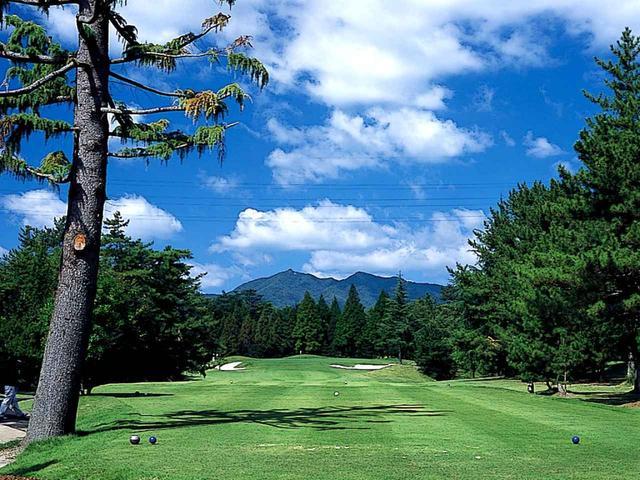 画像: 5番ホール/223㍎/パー3 美しい樹林にセパレートされている。長い間、広島オープンなどの舞台となった。ゴルファーの知名度は高い