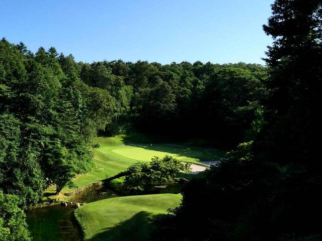 画像: 打ち下ろしの15番(168Y)P3。グリーン手前に小川、斜めに立つ木がシンボル