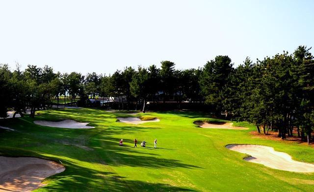 画像: 【下関ゴルフ倶楽部】設計家・上田治は、老松そびえる八ヶ浜の砂浜を選び、6年がかりで造り上げた - ゴルフへ行こうWEB by ゴルフダイジェスト
