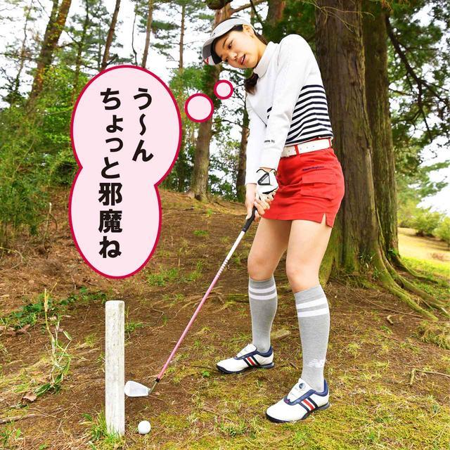 画像1: 【新ルール】邪魔なOB杭をズボッと抜いちゃった! これって2打罰?