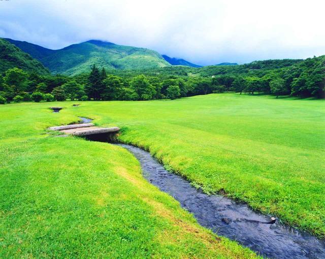 画像: あるがままの地形が生かされた那須ゴルフ倶楽部