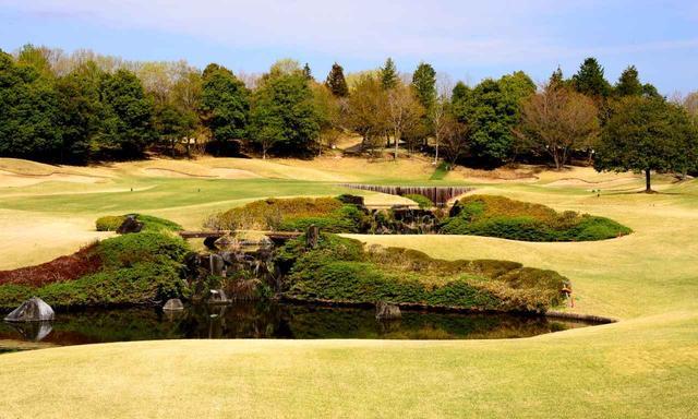 画像: 8番ホール(159Y・P3)3段の滝がある池越え。和風庭園の趣