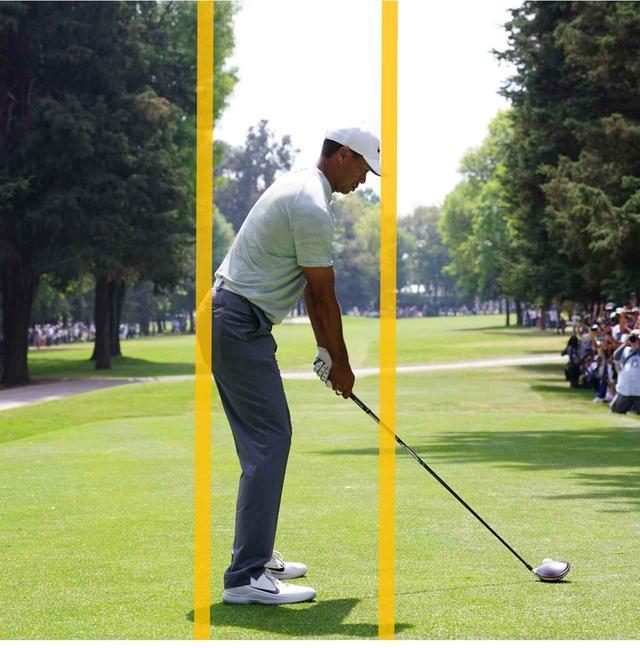 画像: 首からお尻の先まで一直線。バランスのいい構え