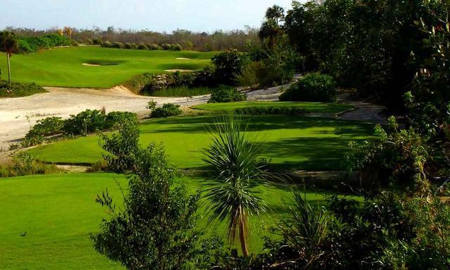画像: マングローブの中を進む「ムーンパレスゴルフクラブ」