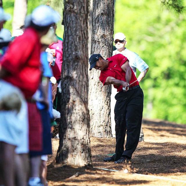 画像: ショットを打つ前に、タイガーは木の下に空間があるか確認。そして、20ヤード先の落ち葉が舞い上がるほどの地を這う弾丸ライナーを放った
