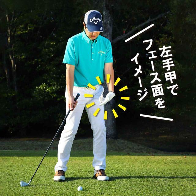画像2: 左手甲を地面に向ける