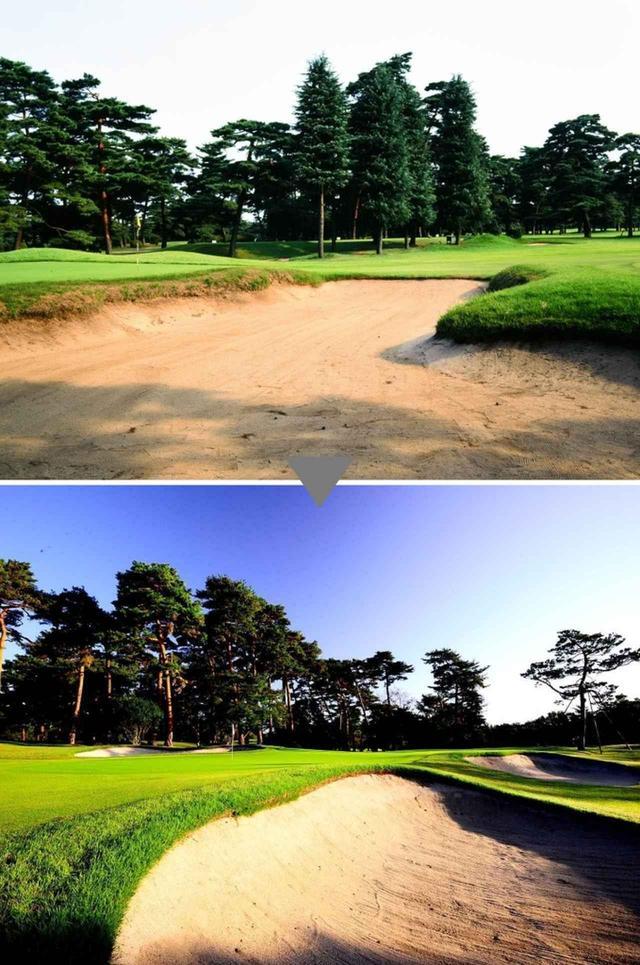 画像: 左手前から右奥へタテに長いグリーン形状
