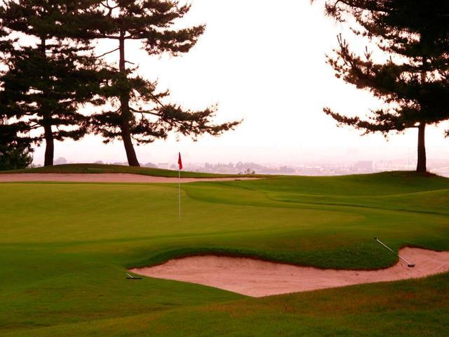 画像: 競技ゴルファーに人気「ゴルフクラブ ツインフィールズ」