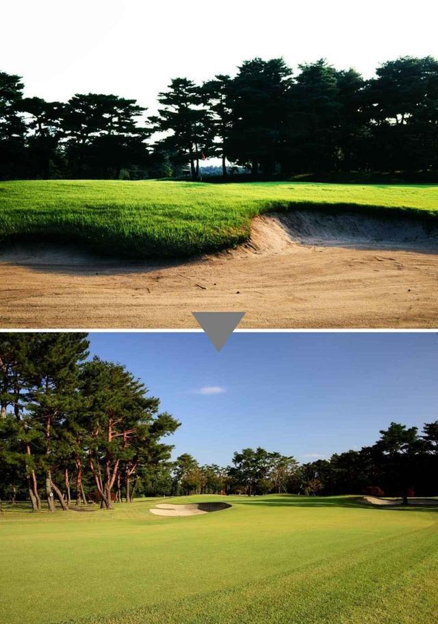 画像: 右手前から左奥に伸びるグリーン形状