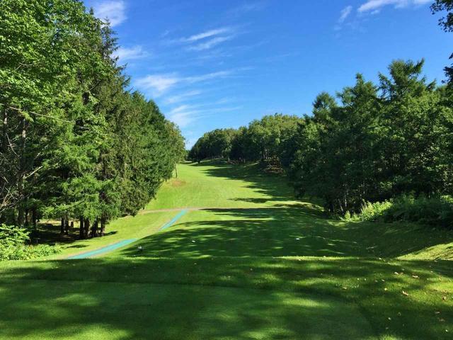 画像: 「ツキサップゴルフクラブ」白樺や末でセパレートされた林間コース