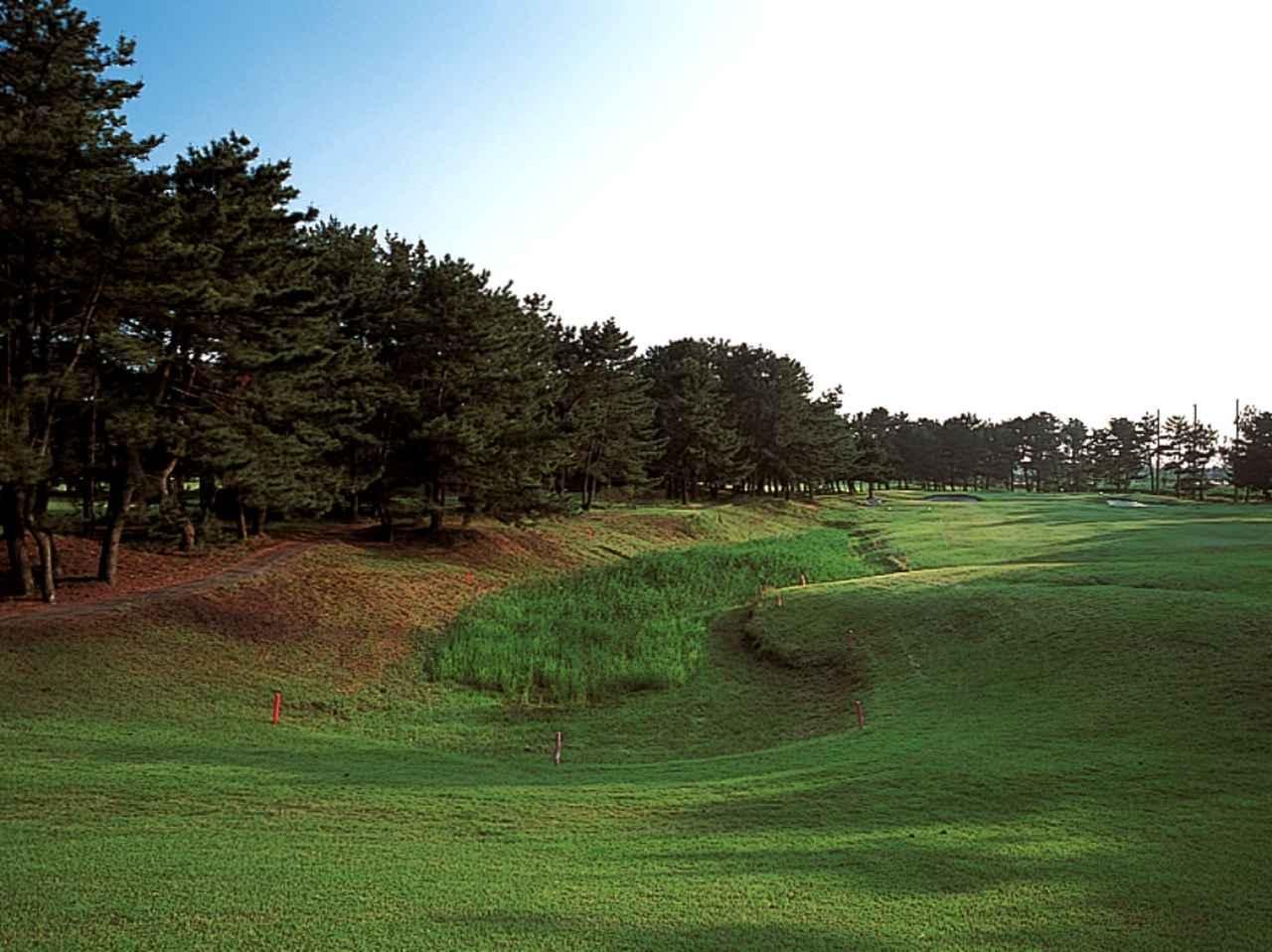 画像: 13番ホール/183㍎/パー3 左側に池、右には松林が枝を伸ばす、その先はOB。レギュラーティからでも171ヤードあり、方向性と飛距離が求められる