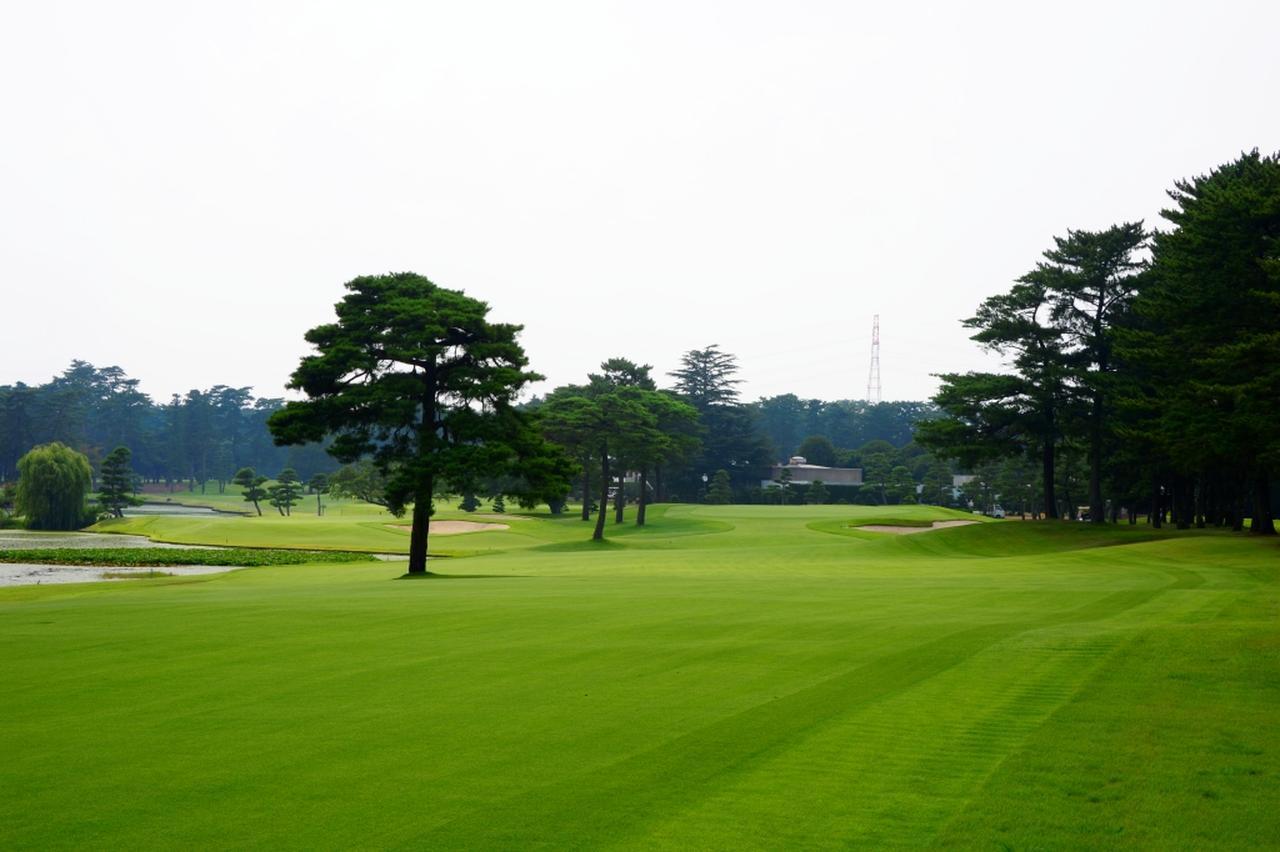 画像: 紫カントリークラブあやめ36 林間のEASTコース、池絡みホールが多いWESTコースの36ホール