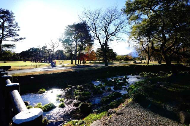 画像: 旧河床の地。クラブハウスとコースの間には小さな川が流れる
