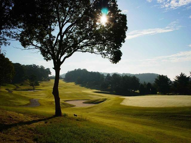 画像: 【会員権相場はウソつかない】「安い」には理由がある? 名義書き換え料10万円以下。なんで他のゴルフ場より安いんですか「関西編」 - ゴルフへ行こうWEB by ゴルフダイジェスト