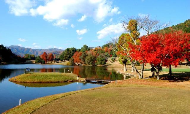 画像: 京都ゴルフ倶楽部 上賀茂コース4番(328Y・P4)バックティは橋を渡る浮島