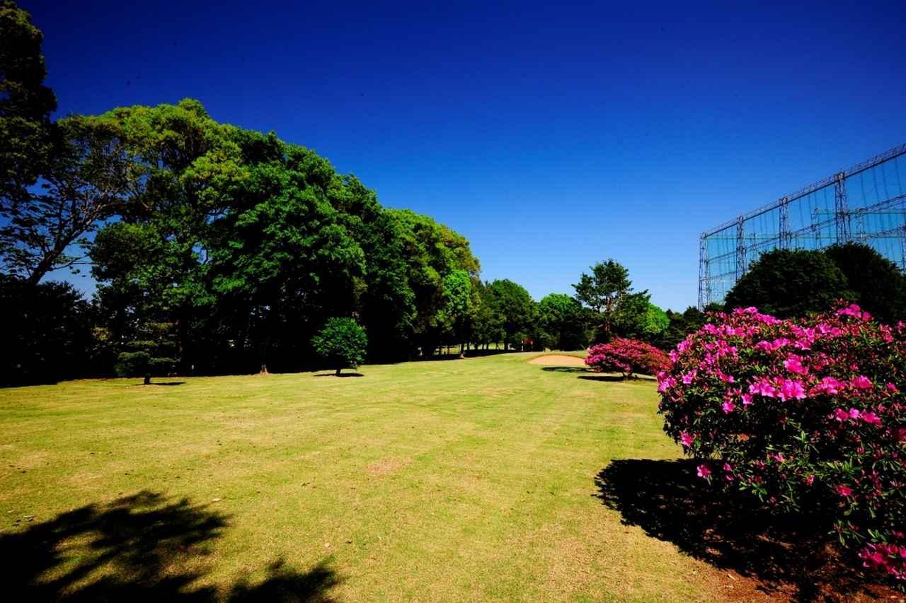 画像: 3番(105Y)梨香台ゴルフガーデン最長コース。ここにもあごの高いガードバンカーが待ち受けている