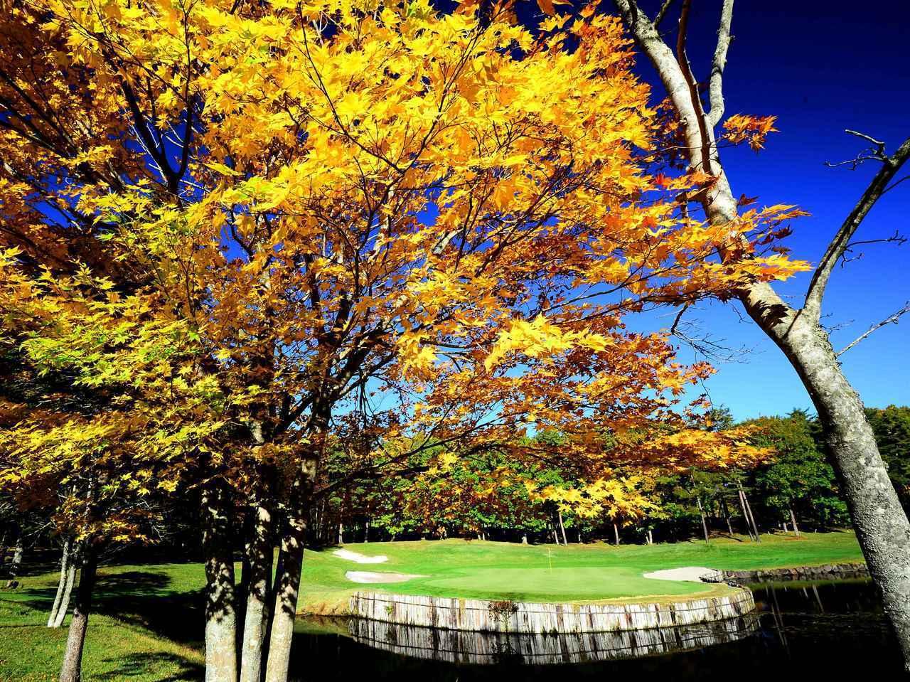 画像: 【岩手・八幡平】紅葉ゴルフ。有名設計家が描いた5つのチャンピオンコースと盛岡三大麺 - ゴルフへ行こうWEB by ゴルフダイジェスト