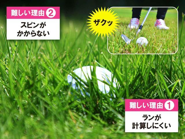 画像: 深いラフだと、ボールが見えないくらいすっぽり沈んでしまう。芝の抵抗が強くなるので、強く打ち込んだり、突っ込みもミスにつながる原因