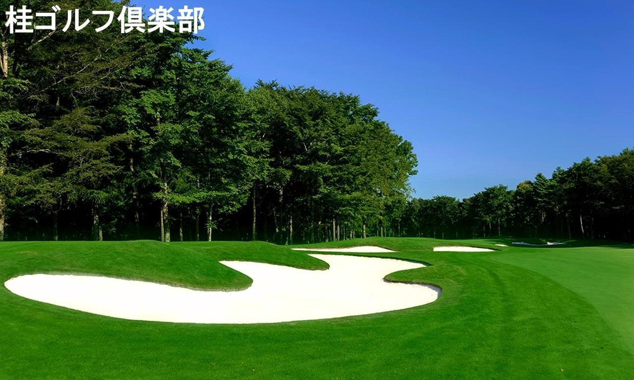 画像5: 【それ行け! 北海道】ゴルフダイジェストの北海道ツアー  一覧はこちら。最高のコースが待っています!(添乗員同行から送迎付きまで)