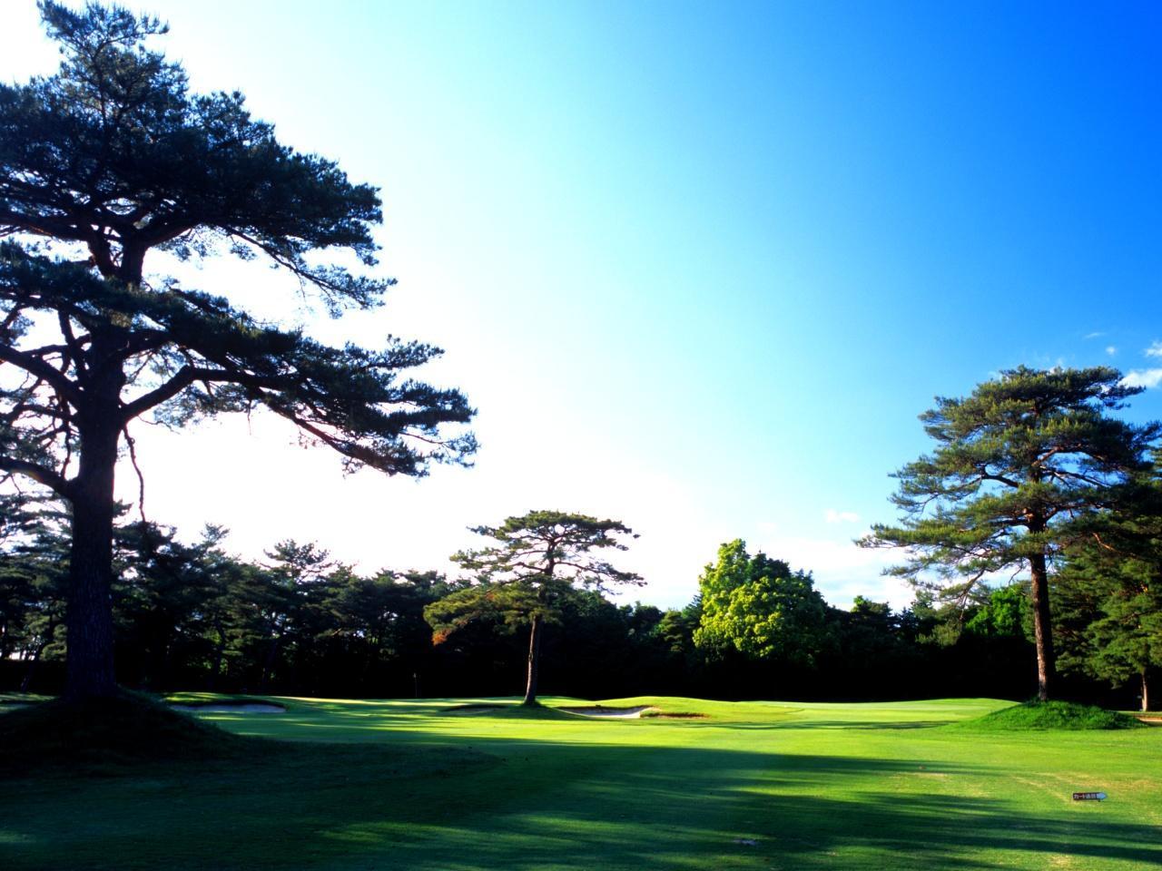 画像: 左、右、真ん中と松の木が待ち受ける江戸崎(南コース3番・385Y・P4)