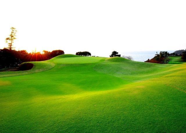 画像: 【コース設計家・赤星四郎②】日本中でアリソンショック! 滞在2ヵ月で朝霞・川奈・廣野を設計、霞ヶ関・鳴尾・宝塚に改修案 - ゴルフへ行こうWEB by ゴルフダイジェスト