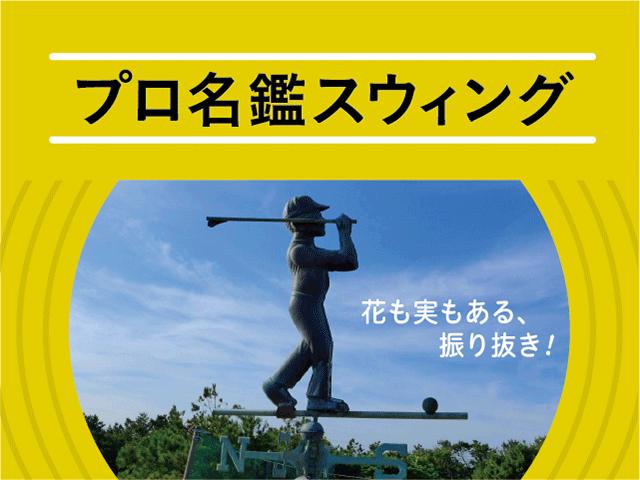 画像: プロ名鑑スウィング - ゴルフへ行こうWEB by ゴルフダイジェスト