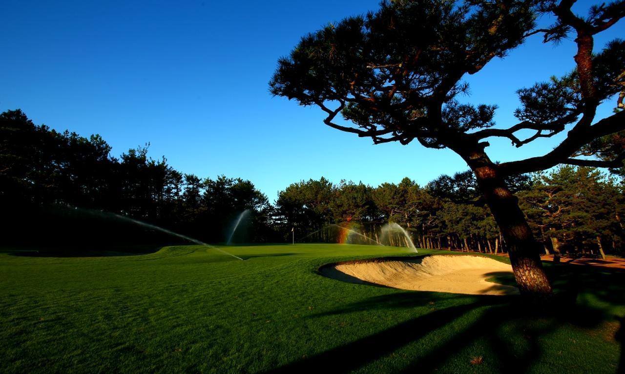 画像: 【宮崎・合宿】吉田洋一郎プロが驚異の反力打法マスター合宿を開催 。2019レッスン オブ ザ イヤー受賞記念 フェニックスシーガイア 3日間 3プレー(一人予約可能) - ゴルフへ行こうWEB by ゴルフダイジェスト