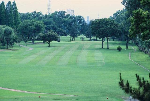 画像: 大宮国際カントリークラブ(45H・16010Y・P180)