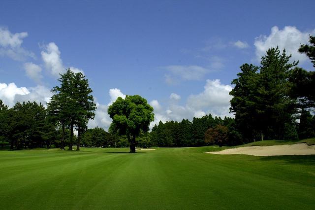 画像: イースト9番(420Y・P4・ニューグリーン)セカンドショットの先に並ぶ木々がハザードに