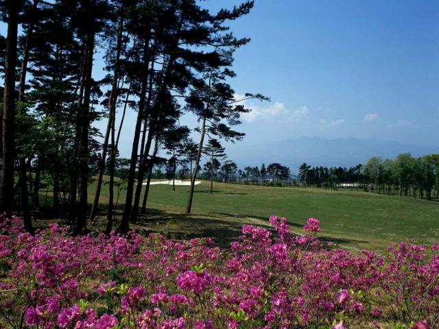 画像: 【米子ゴルフ場】昭和30年代にしては規格外の長大コースだった。設計は上田治 - ゴルフへ行こうWEB by ゴルフダイジェスト