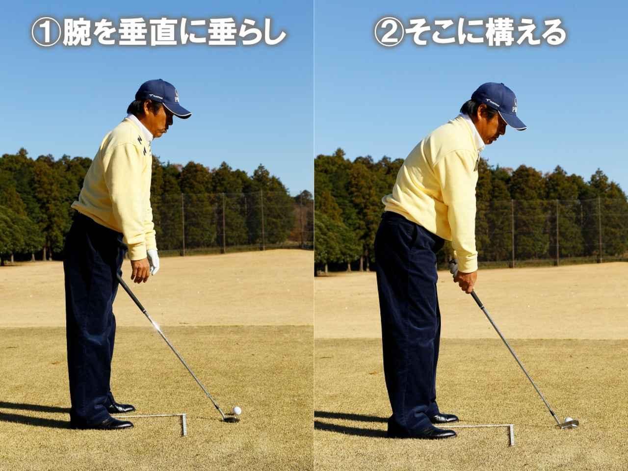 画像: 引力に逆らわず腕をダラーン垂らす
