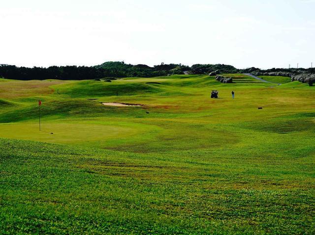 画像: 海に近い低木だけの地に造られたオーシャンリンクス宮古島。開場は1996年