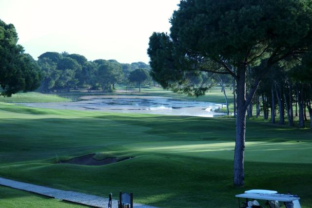 画像1: グロリアゴルフクラブ