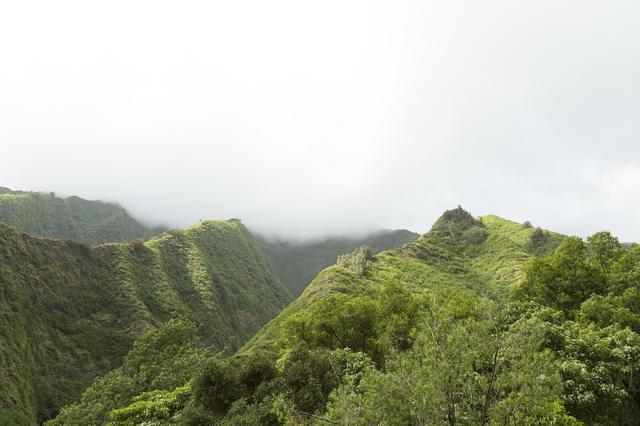 画像2: 写真提供:ハワイ州観光局