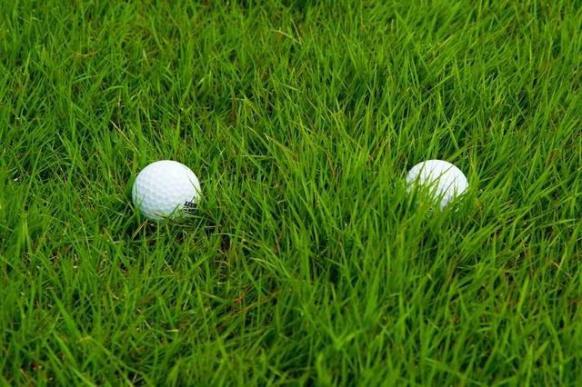 画像: 右のボールのほうが沈んで見えるが、実はどちらも同じ浮き具合