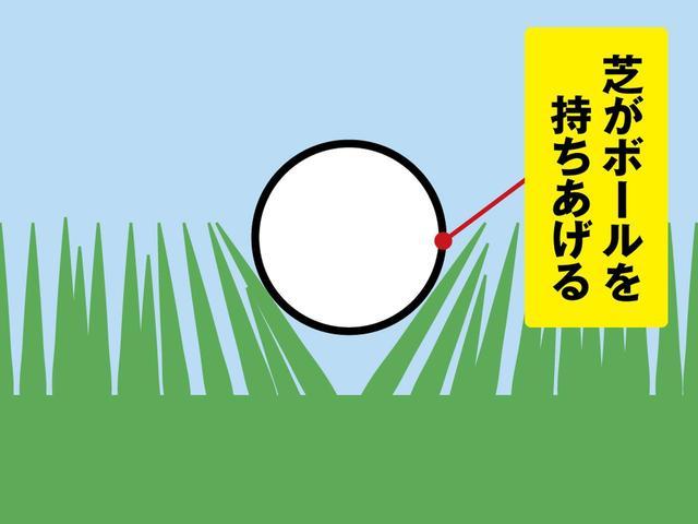 画像: 夏芝は元気なので、よほど密度が低くないかぎり球の重みに負けることはない。「特に日本の野芝や高麗は茎が強いので球が浮きやすいんです」(横田)