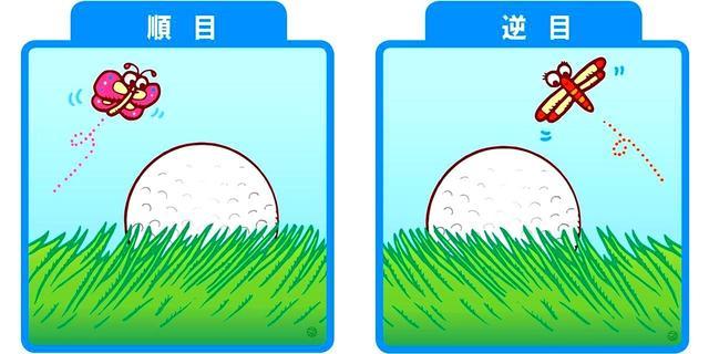 画像: 【そのニ】芝目(芝がどちらに倒れているか)