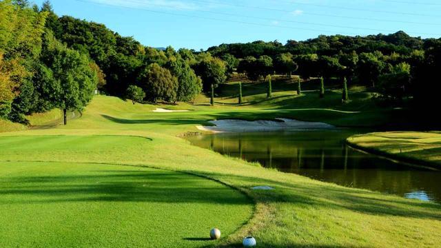画像2: 5番(166Y・P3)右側に池が続く名物パー3。グリーンは2段