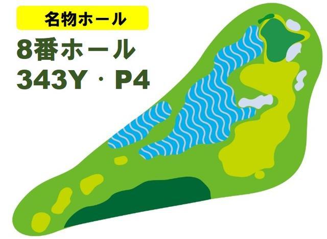 画像: ドッグレッグのパー4はグリーンまで直線で275ヤードと池越えでの1オンが可能。ただし池を越えても左へずれるとグラスバンカーへと転がる難ホールだ