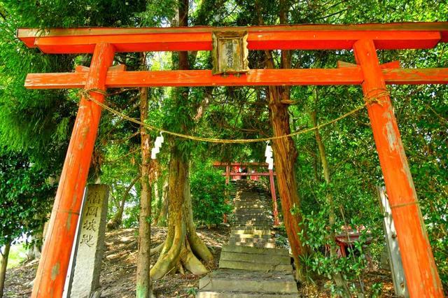 画像1: 長船のコースを見守る鎮守さまは、福岡城址でもあります