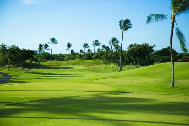 画像7: 【知ってるようで知らなかった】ハワイ・オアフ島にゴルフ場はいくつある? ラグジュアリーあり、シーサイドあり、ジャングルあり、次の旅行はココ回ろう!