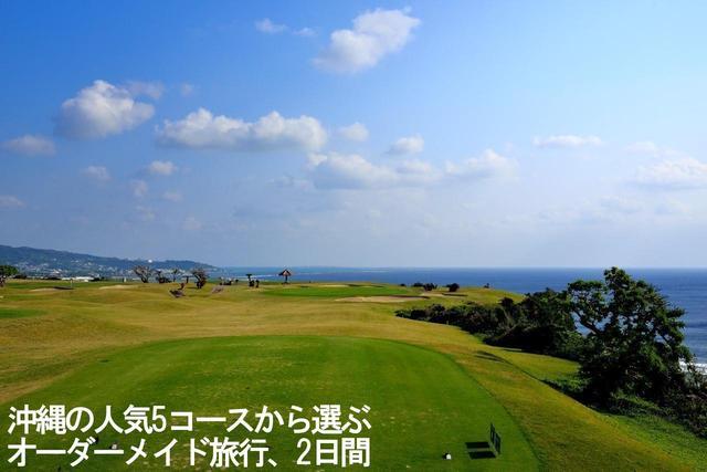 画像2: 【国内/沖縄】