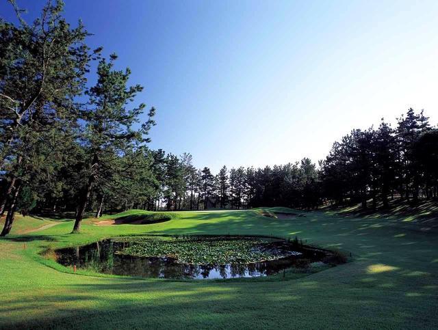 画像: 片山津G白山コース13番ホール/193㍎/パー3 グリーン手前左に池、手前右にはバンカーがある。グリーンはやや左に傾斜している