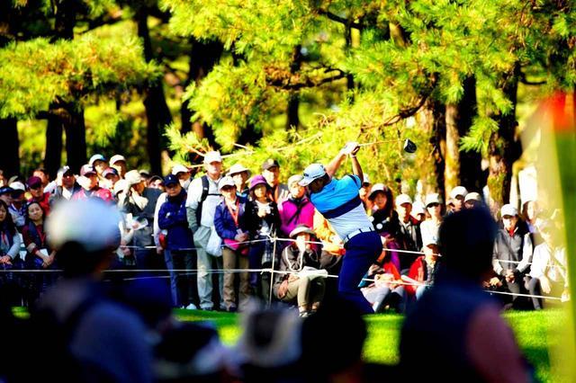 画像: 松の木に囲まれた難度の高いホールが続く。ダンロップフェニックスより