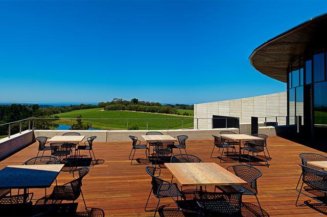 画像: テラスからは一面のブドウ畑の眺め。世界有数のワインを楽しめる