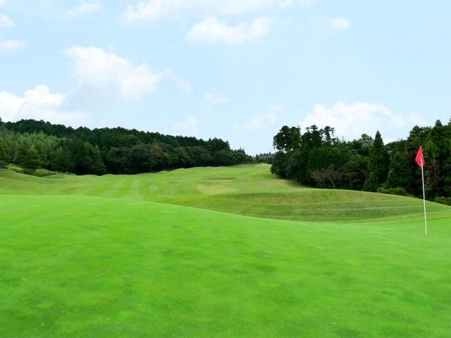 画像: 10番(493Y・P5)右から左への2段グリーン